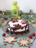 乳酪蛋糕用巧克力和柠檬 免版税库存图片