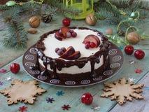 乳酪蛋糕用巧克力和柠檬 库存照片