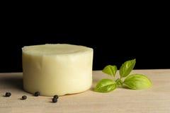 乳酪轮子 图库摄影