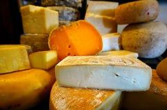 乳酪选择 免版税库存照片