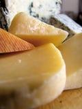 乳酪1 免版税库存图片