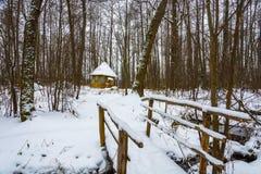了不起的受难者Paraskeva的圣洁春天在冬天森林 免版税图库摄影