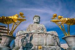 了不起的菩萨Nofukuji寺庙的兵库Daibutsu在神户 免版税库存图片