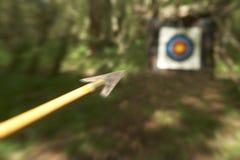 争取射箭箭头目标森林地 免版税库存照片