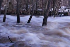 争斗公园岩石登上北卡罗来纳洪水 免版税图库摄影