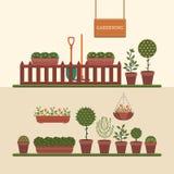 从事园艺和生长植物 免版税库存照片