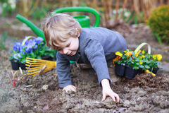 从事园艺和种植花的小男孩在庭院里 免版税库存照片