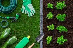 从事园艺和食物生产 免版税库存图片