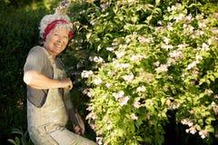 从事园艺在后院的老妇人 免版税库存照片