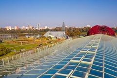从事园艺在大学l现代生态大厦屋顶  免版税图库摄影