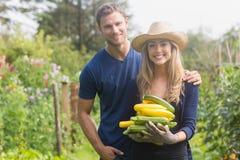 从事园艺在晴天的逗人喜爱的夫妇 库存图片