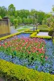 从事园艺在Keukenhof、郁金香花和树 库存照片