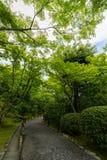从事园艺在Tenryu籍寺庙,京都,日本 免版税库存图片