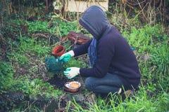 从事园艺的妇女年轻人 免版税图库摄影