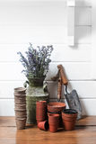 从事园艺的寿命仍然 免版税库存照片