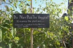 从事园艺的标志 库存图片