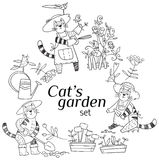 从事园艺的猫 库存图片