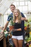 从事园艺自温室的逗人喜爱的夫妇 库存照片