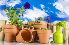 从事园艺,自然题材的概念 免版税库存照片