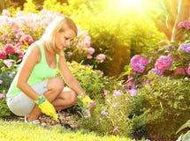 从事园艺 种植花的白肤金发的少妇在庭院里 库存图片