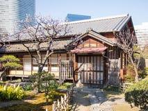 从事园艺hamarikyu日本东京 图库摄影