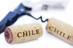 智利酒黄柏&瓶盖启子 免版税库存图片