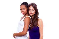 二个不同国籍女孩纵向  免版税库存图片