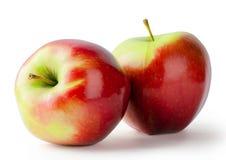 二个成熟红色苹果 库存照片