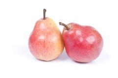 二个梨 免版税图库摄影