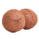 二个椰子 库存图片