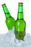 二个瓶在冰的啤酒 免版税图库摄影