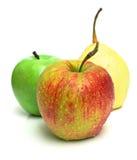 二个苹果和梨 免版税库存图片
