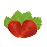 二个草莓 免版税库存图片