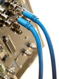 二个HD SDI录影电缆 库存图片