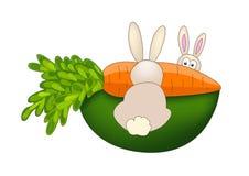 二兔子 库存照片