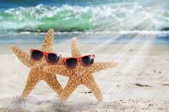 二副海星海滩太阳镜 免版税库存图片