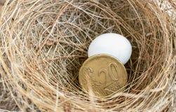 二十与蛋鸟的欧分硬币在鸟` s巢浓缩 免版税库存图片