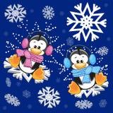 二只企鹅 免版税图库摄影