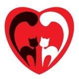 二只猫 免版税库存照片