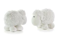二只空白羊羔 免版税库存图片