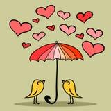 二只逗人喜爱的鸟在伞下 库存图片