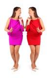 二名同样美丽的妇女在礼服微笑穿戴了 库存照片