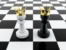 二国王 库存图片