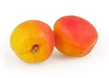 二在白色查出的杏子 库存图片