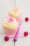 二块杯形蛋糕 免版税图库摄影