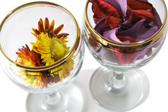 二块玻璃特写镜头照片与被按的花的 库存照片