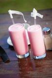 二块玻璃用草莓奶昔和秸杆 库存图片