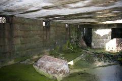 二战重的防空电池Gunsite 库存图片