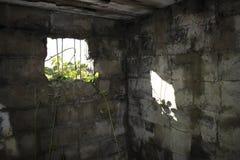 二战重的防空电池Gunsite 库存照片
