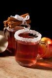 二杯被仔细考虑的酒 免版税图库摄影